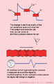Ion currents en (CardioNetworks ECGpedia).png