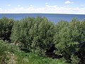 Its Not Easy to Find New Titles After Uploading Several Hundred Photos - panoramio.jpg