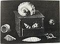 Jacques Linard - Shells in a Box.jpg