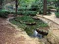 Jardín Botánico Histórico.JPG