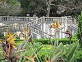 Jardim Botanico da Ajuda (13985656076).jpg