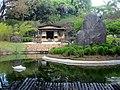 Jardim Japonês Jani Pereira (9).jpg