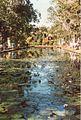 Jardin de Pamplemousses (3002665520).jpg