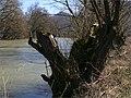 Jarná voda - panoramio (1).jpg
