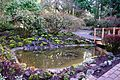 Jenkins Estate decorative pond - Aloha, Oregon.JPG