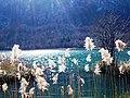 Jezero, Bosnia and Herzegovina - panoramio (42).jpg