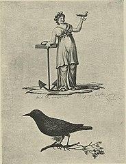 Kvinnefigur med anker og fugl; fugl på kvist