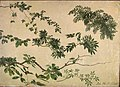 Johan Christian Dahl - Study of Twigs and Leaves - NG.M.02641 - National Museum of Art, Architecture and Design.jpg