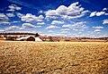 Jordan Twp Farm.jpg