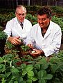K7690-12scientists.jpg