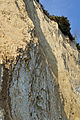Kap Arkona, am Strand, v (2011-10-02) by Klugschnacker in Wikipedia.jpg