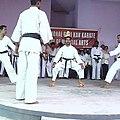 Karate demo 4.jpg