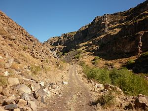 Kasagh River canyon - view from bottom 01.JPG