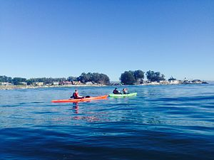 Santa Cruz harbor - Photo of kayakers just outside the santa cruz harbor.