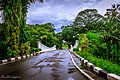 Kebun Raya Bogor 26.jpg