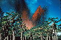 Kilauea Eruption 1960.jpg