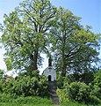 Kirendl-Tegernbach-Sommer.jpg