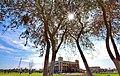 Kohat University of Science & Technology (KUST).jpg