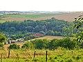 Kohlberg (Hill), Pirna 121947116.jpg