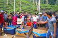 Kontiki-boat-challenge.png