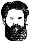 Феликс Валлотон. Портрет Короленко, 1896.