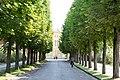 KulTour Parkanlage Sanssouci Am Grünen Gitter-3180.jpg