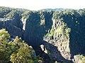 Kuranda QLD 4881, Australia - panoramio (67).jpg