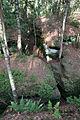 Labyrinth Sächsische Schweiz (von oben).jpg