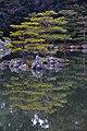 Lagoa no templo Kinkaku-ji - lake (7276470198).jpg