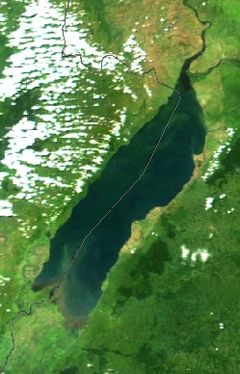 ஆல்பர்ட் ஏரி - 2002 NASA MODIS satellite picture. The dotted grey line is the border between Congo (DRC) (left) and Uganda (right).