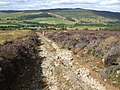 Land-Rover track on Little Trochry Hill. - geograph.org.uk - 633043.jpg