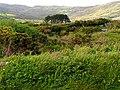 Land between Farranamanagh and Dromnea - geograph.org.uk - 14875.jpg