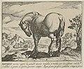 Landschap met paard uit Engeland. NL-HlmNHA 1477 53011500.JPG