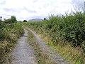 Lane, Doobally - geograph.org.uk - 1431409.jpg