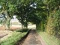 Lane to Brambles Farm - geograph.org.uk - 1005291.jpg