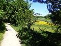 Langdalen (maj).jpg