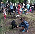 Laps ja lammas tutvumas Tartu hansapäevadel 2014.jpg