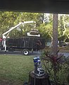 Largo, florida-clawtruck01.JPG
