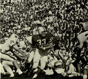 1966 Florida Gators football team - Larry Smith (33) vs. Auburn.