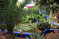 Le jardin des majorel 7.JPG