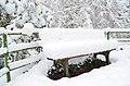 Lebenswertes chemnitz stadtpark winter bank.jpg