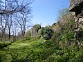 Les ruines du chateau de hedé - panoramio.jpg