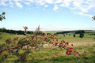 Lincolnshire Wolds Hill range in Lincolnshire