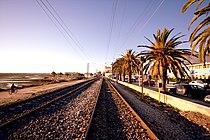 Linha do Algarve em Faro.jpg
