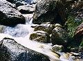 Little creek in Mount Buffalo National Park.jpg