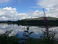 Loch Etive 03.JPG
