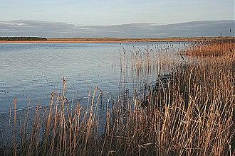 Loch of Strathbeg - Looking south-east across the loch