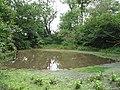 Lomer Pond - geograph.org.uk - 53201.jpg