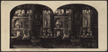 Looking into the Conservatory, New York, from Robert N. Dennis collection of stereoscopic views.png