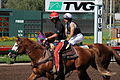 Los Alamitos Sept 2014 IMG 6755 (15131239128).jpg